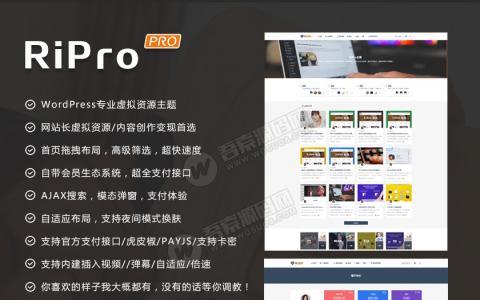 Wordpress主题:RiPro6.3.8最新版完整修复去后门和加密文件